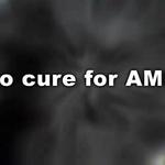 Nano-Retina - AMD